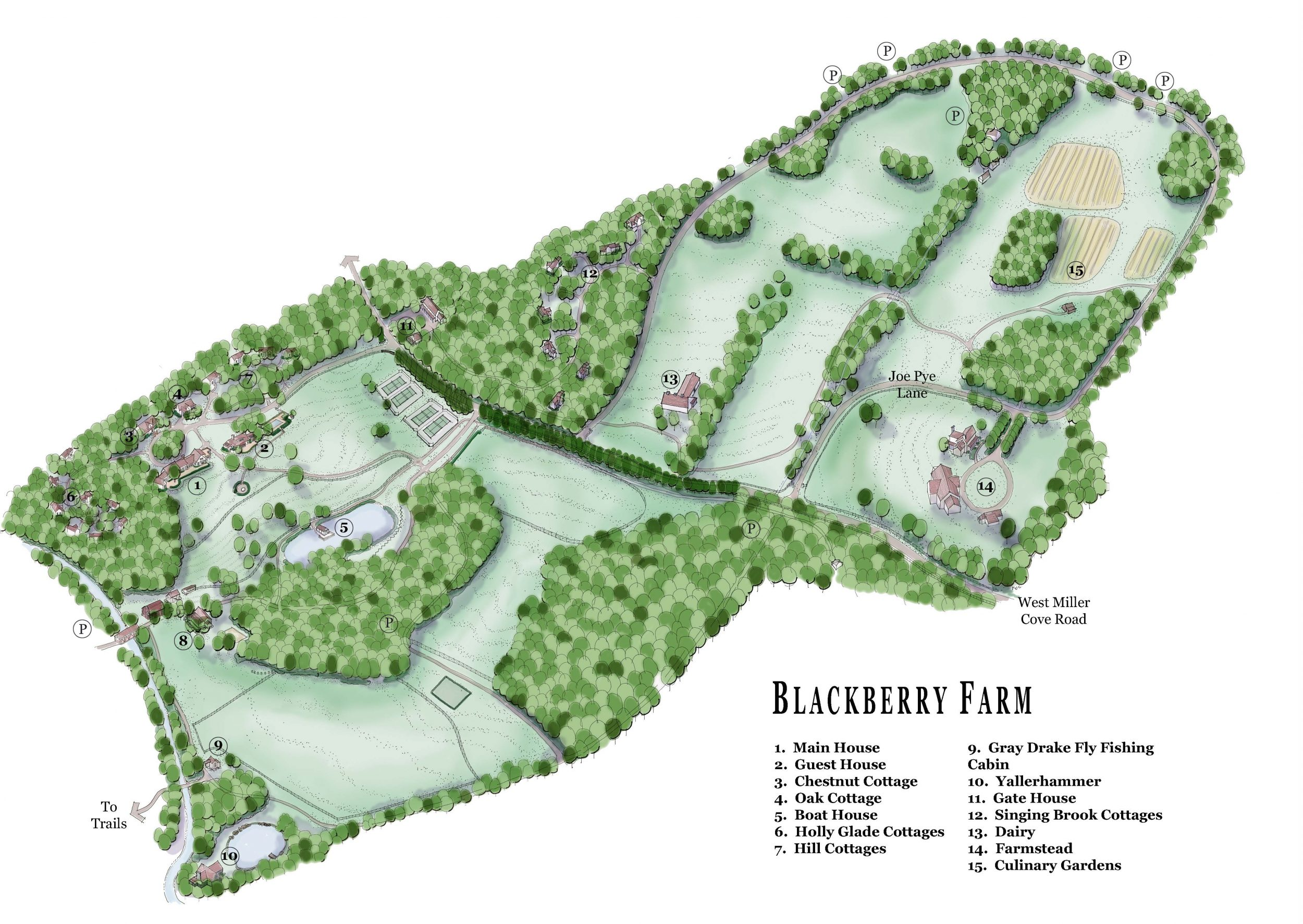 Blackberry Final-FEBRUARY 2007