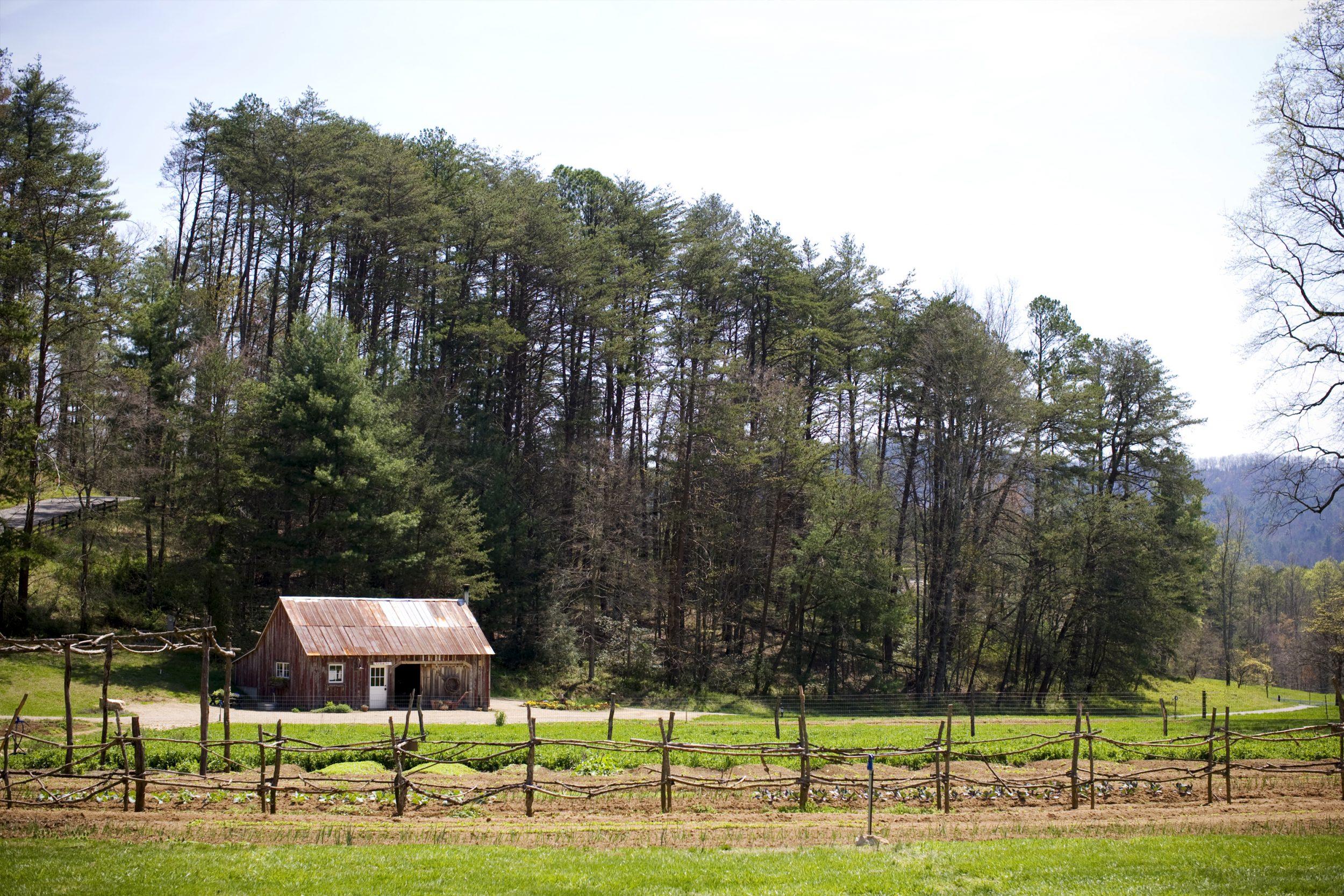 Blackberry Farm_10