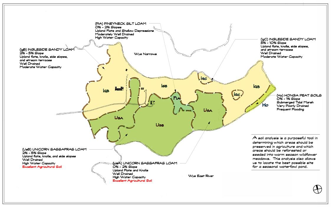 Soil Analysis1